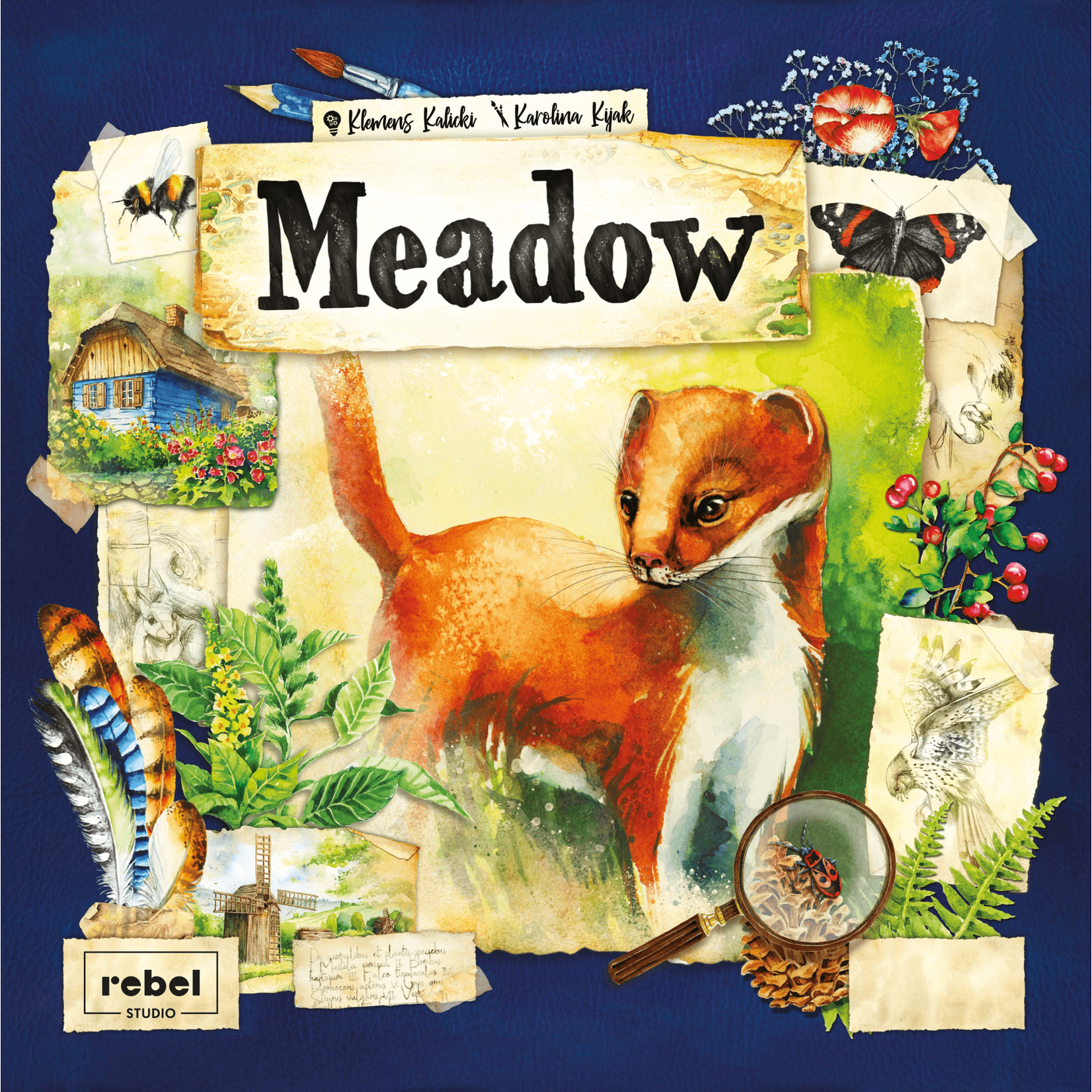 Asmodee Meadow