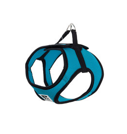 RC PETS RC Pets - Step In Cirque Harness - LG Teal
