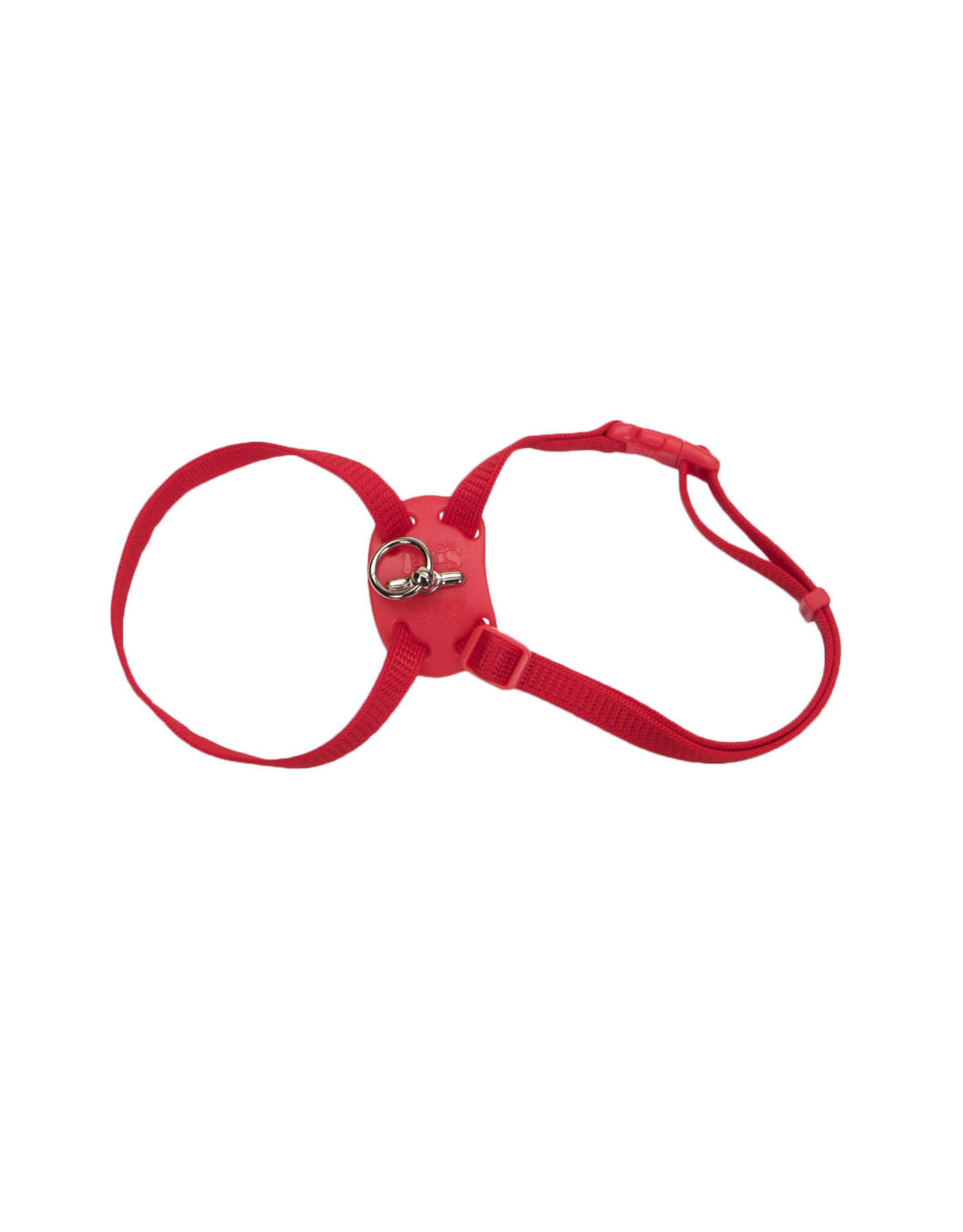"Coastal Coastal Cat Nylon Harness 12-18"" Red"