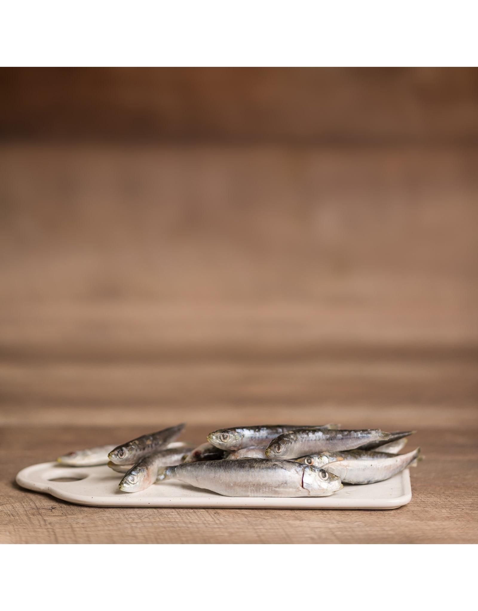 BCR BCR BONES Sardines 1lb