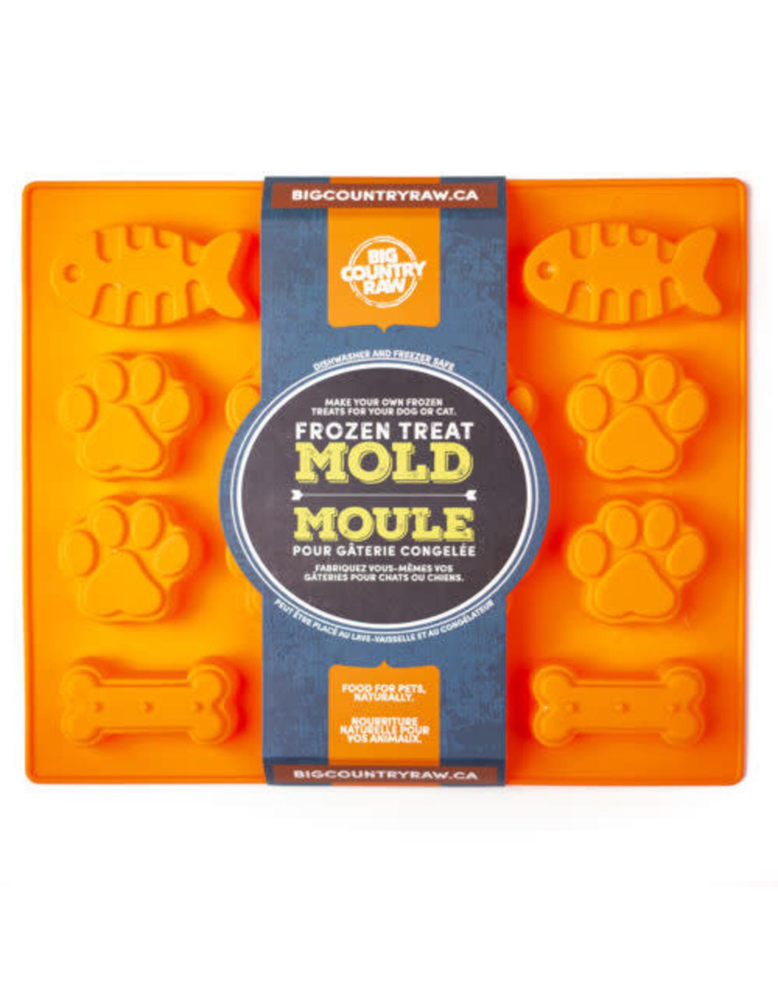 Big Country Raw BCR Frozen Treat Mold - orange large