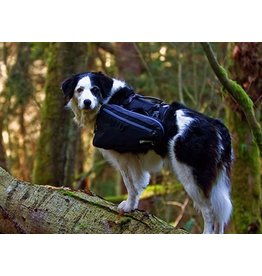 Canine Equipment Trail Pack ULT Small Black