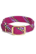 Mendota Mendota Confetti Collars Raspberry up to 24""