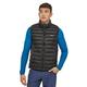 Patagonia Patagonia Men's Down Sweater Vest