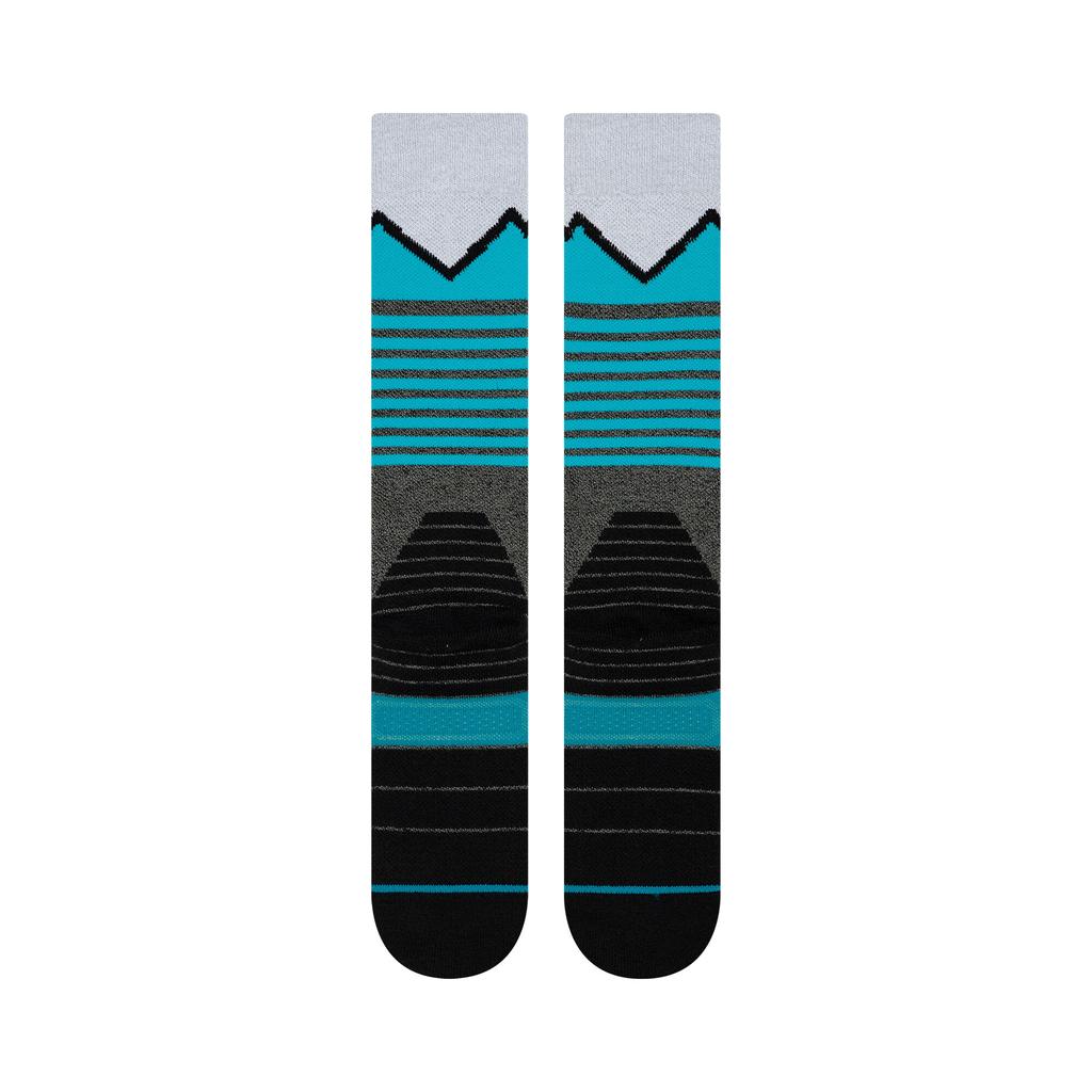 STANCE Stance Men's Snow Sock (W20)