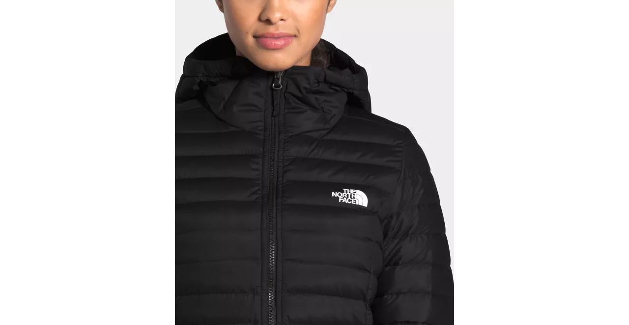 The North Face The North Face Women's Stretch Down Parka