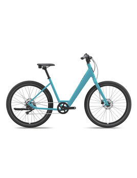 Giant Momentum Vida Low Step (2021)
