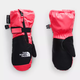 The North Face The North Face Toddler Mitt