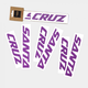 Santa Cruz Santa Cruz Downtube Frame Decal