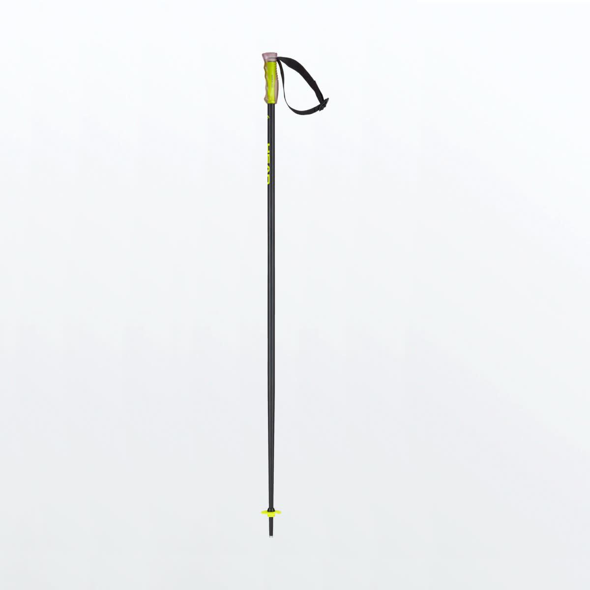 Head Head Multi Ski Pole