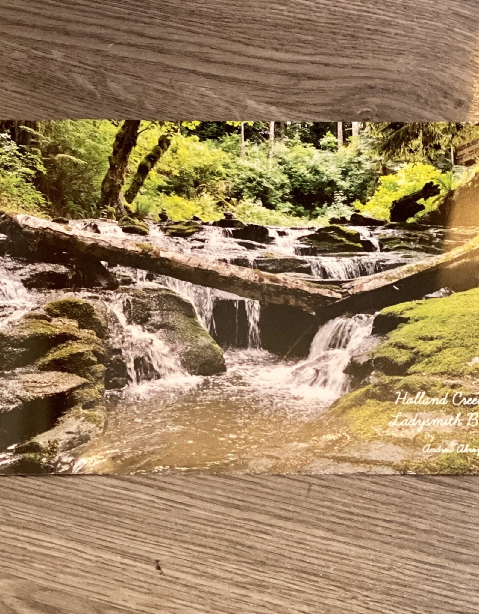 Post Card - Holland Creek