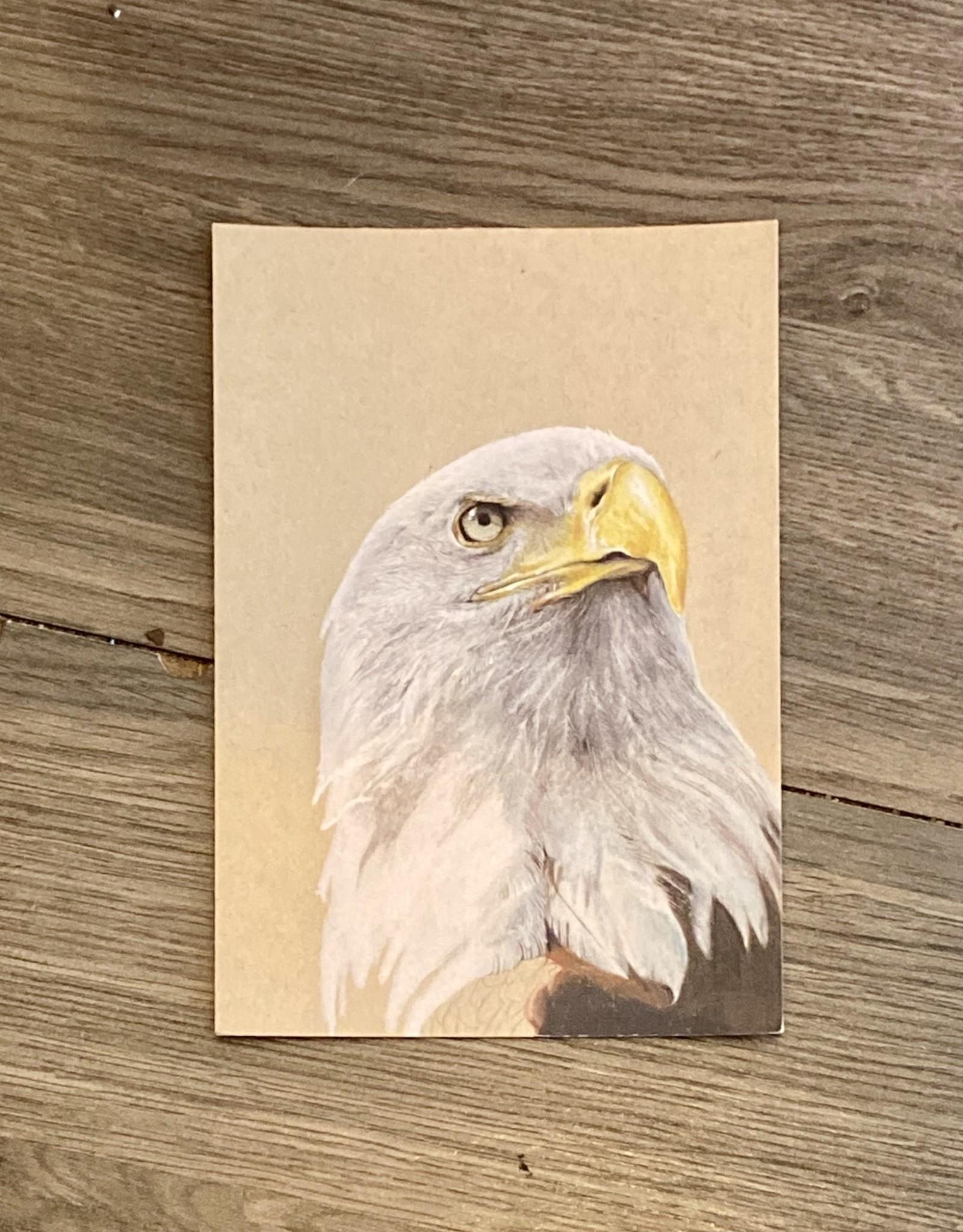 Purple Pigeon Treasures Post Card - Eagle