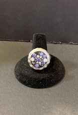 Purple Pigeon Treasures Ring     Size 9.5