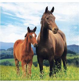creative converting Horse and Pony Lun. Napkins - 16ct.