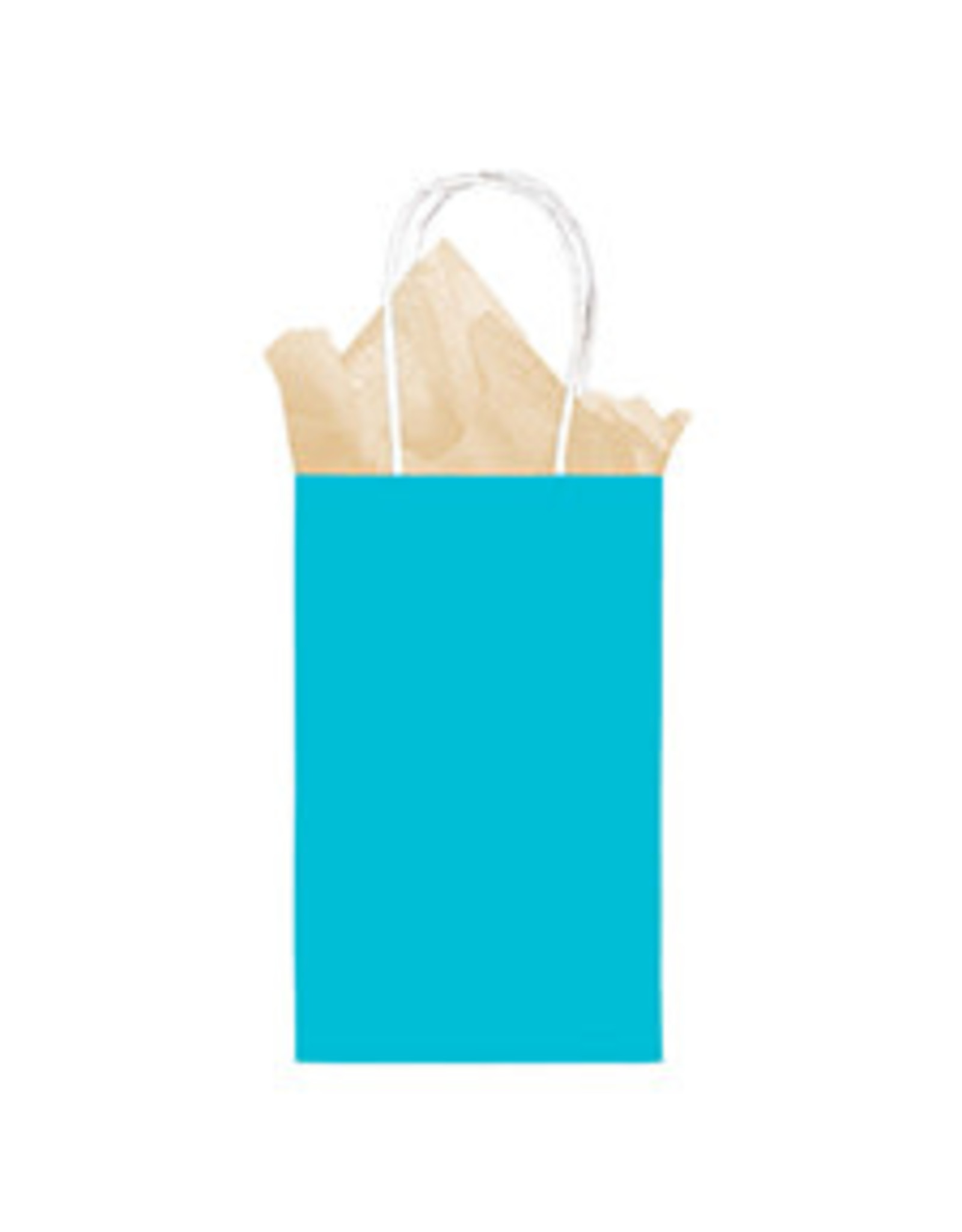 Amscan Caribbean Blue Sm. Kraft Bag