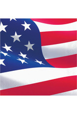 creative converting American Flag Lunch Napkins - 16ct.
