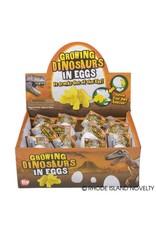 "RHODE ISLAND NOVELTY 3"" Growing Dinosaur Egg - 1ct."