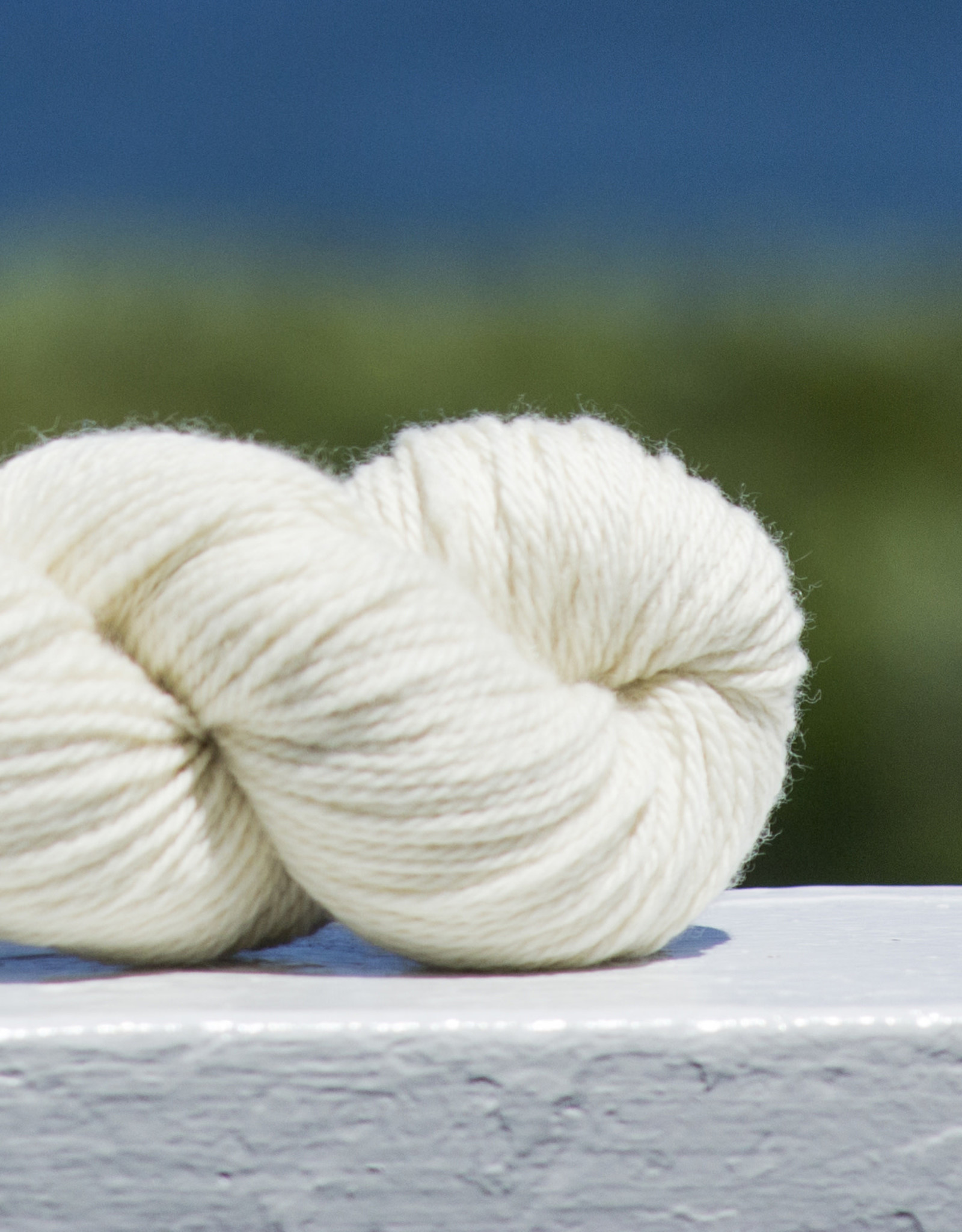 North Light Fibers Water Street DK