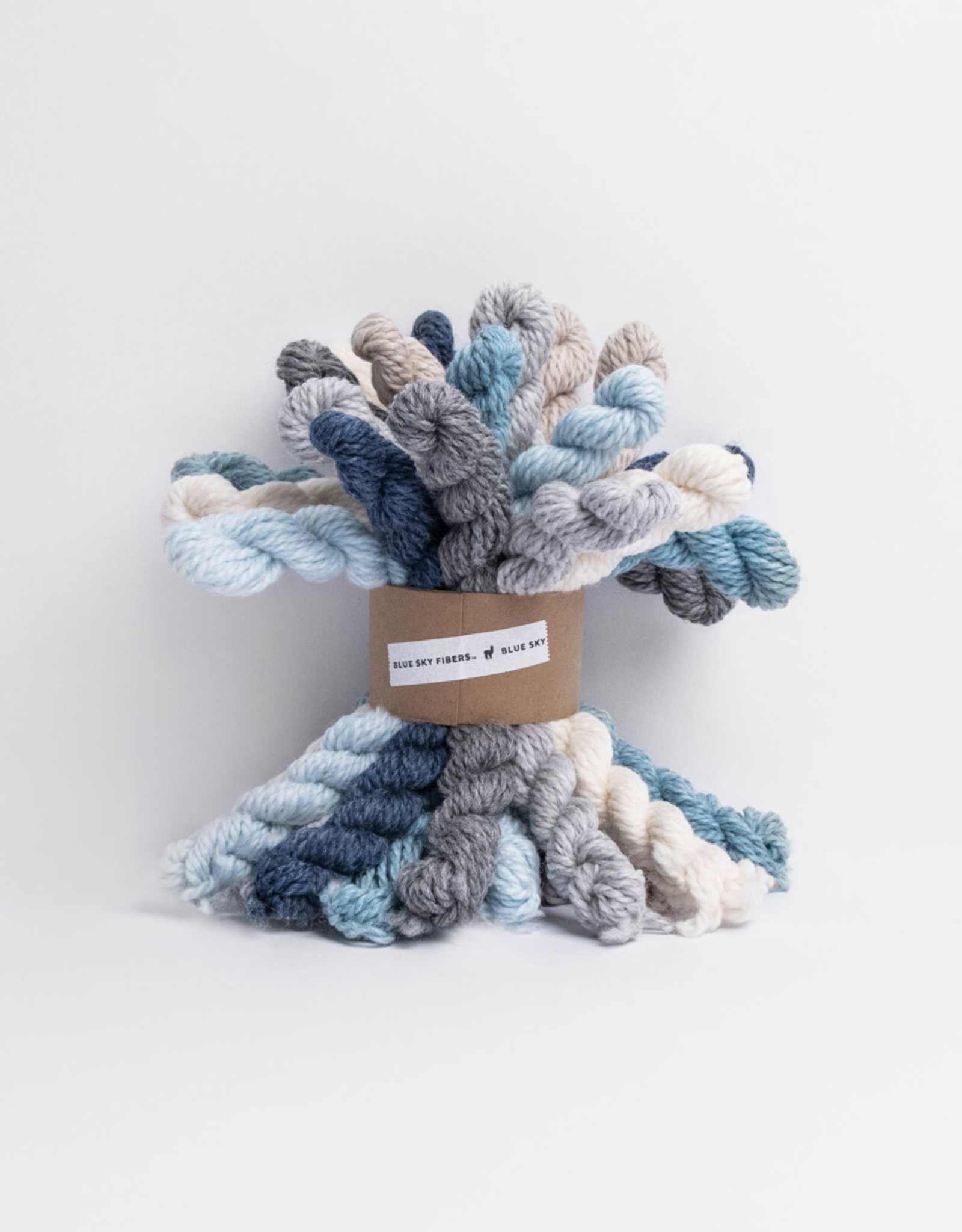 Blue Sky Fibers Woolstok Bundle