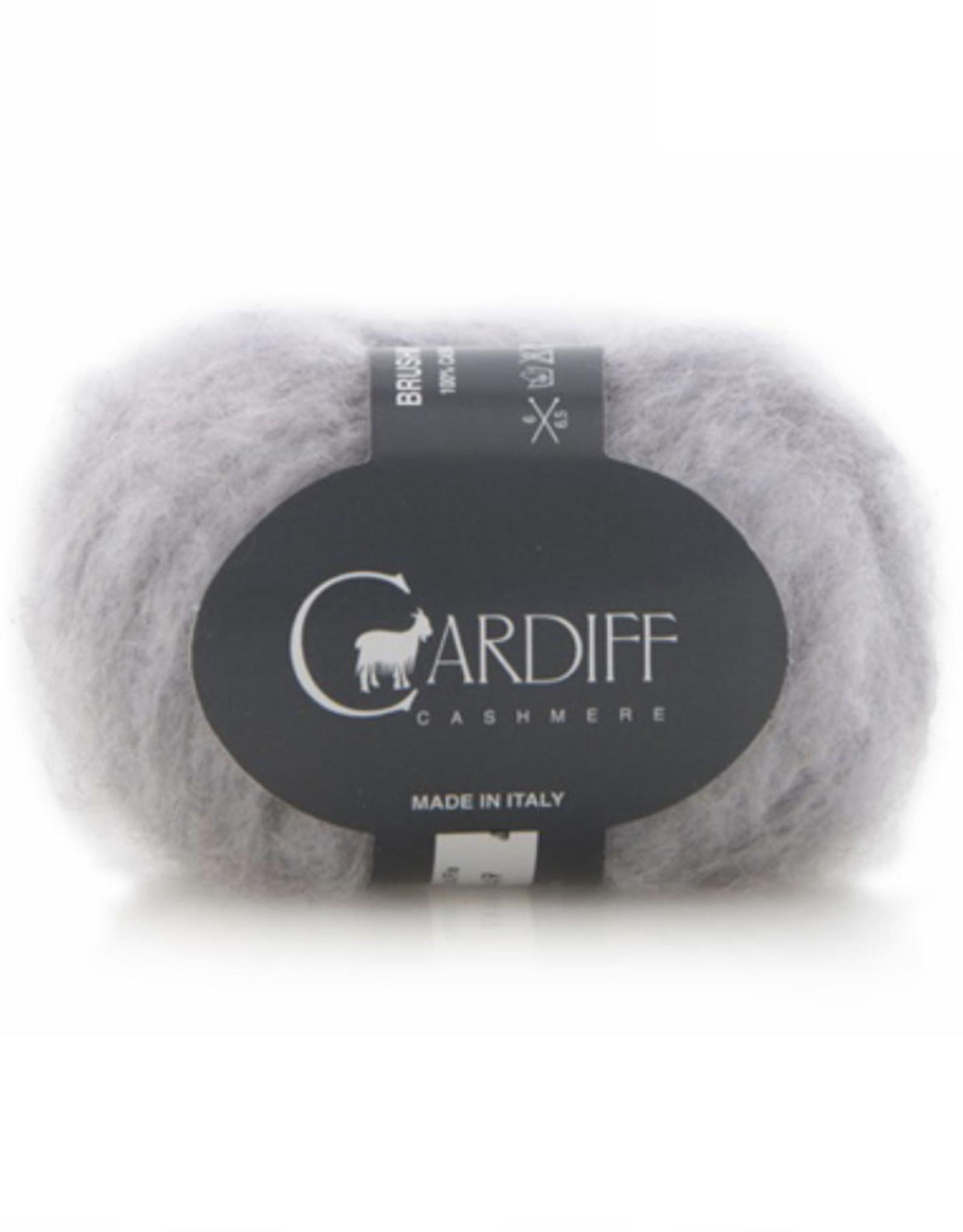 Cardiff Brushmere