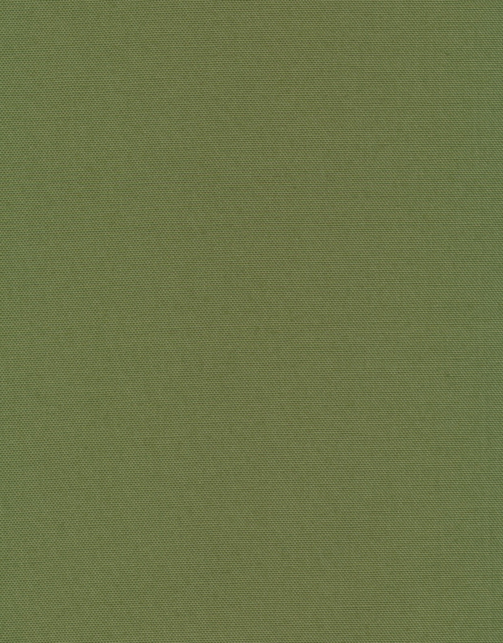 Cloud 9 Fabric Canvas Solid