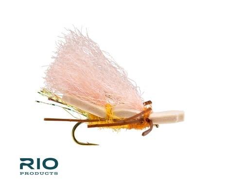 RIO RIO Chubby Norm [Single]