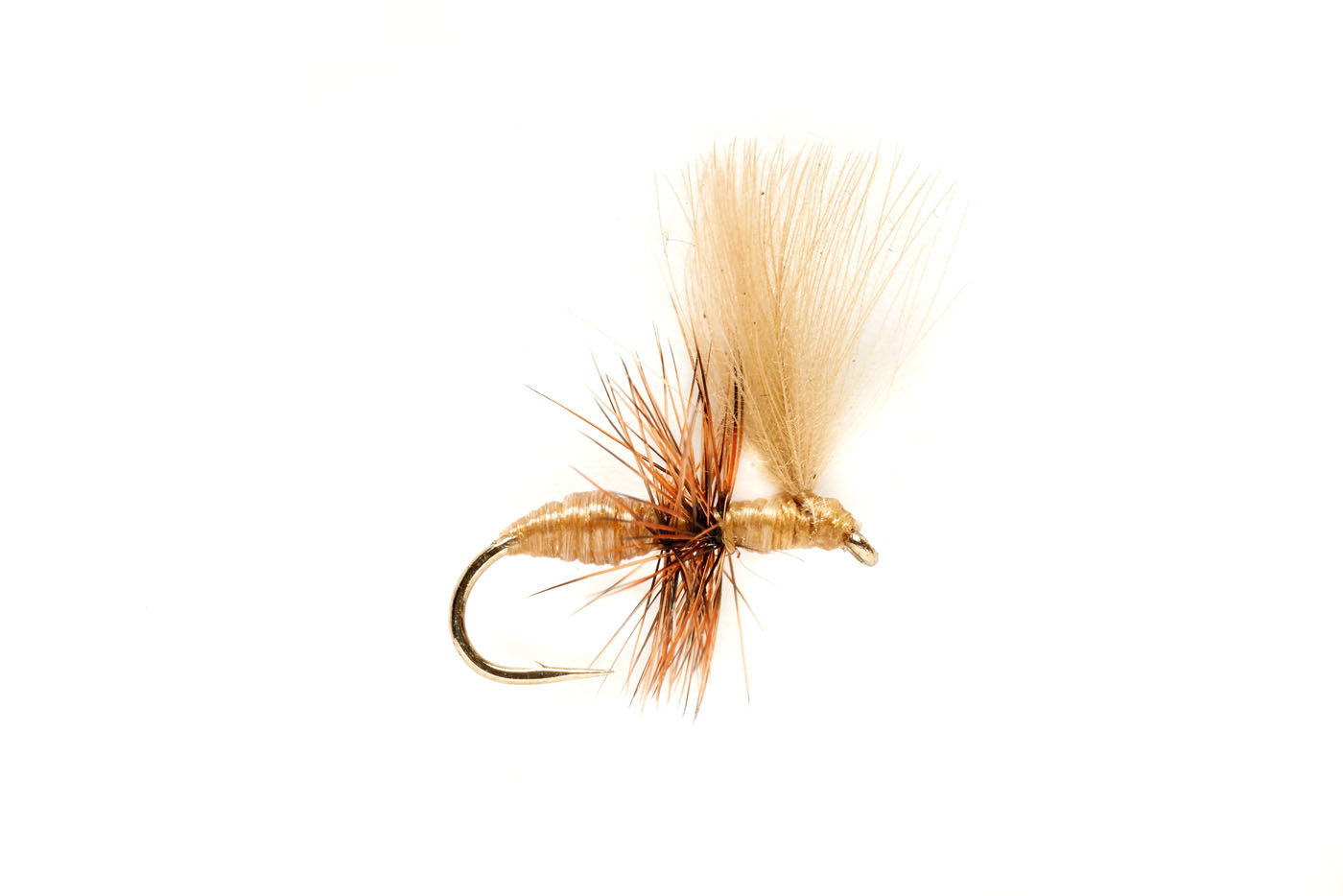 FULLING MILL Tan CdC Ant S16