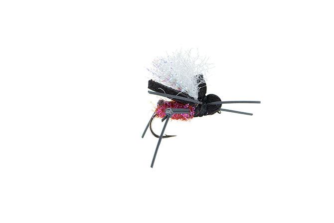 MFC MFC  - AJ's Beetle - Ringo