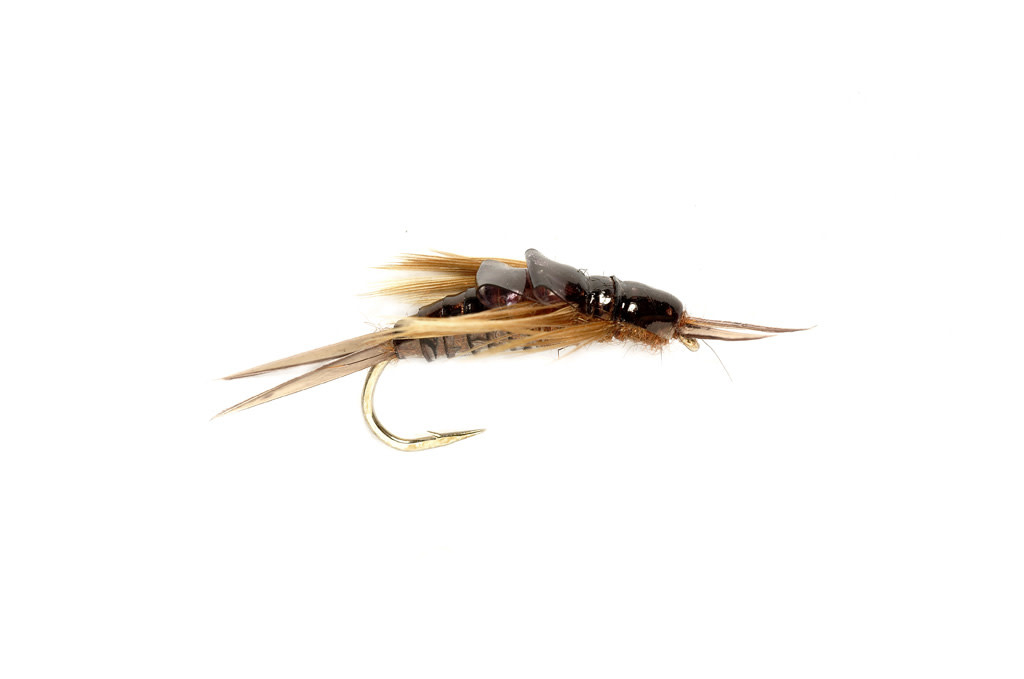 ORVIS OE Stonefly Nymph FM