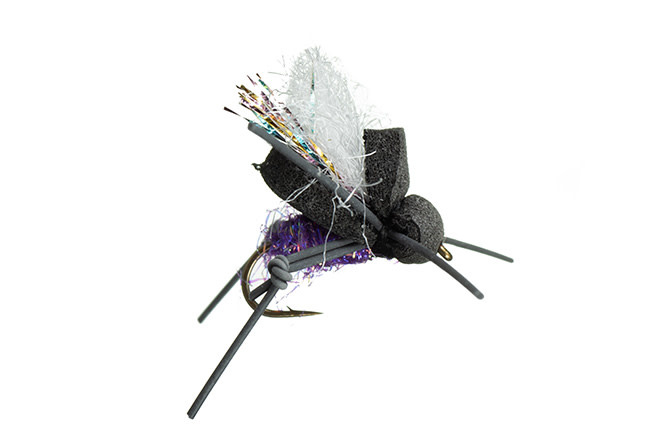 MFC AJ's Beetle - Paul Purple S14 [Single]