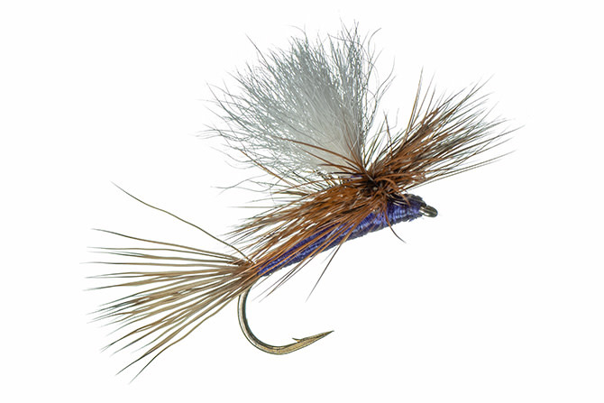 MFC MFC Carlson's Purple Haze (Calf Tail Post) S20  [Single]