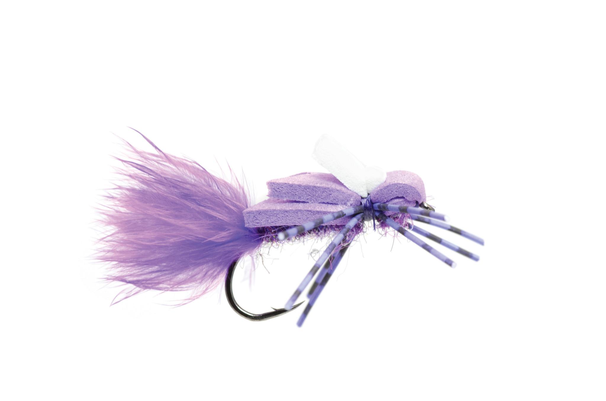 Transfoamer Purple S10