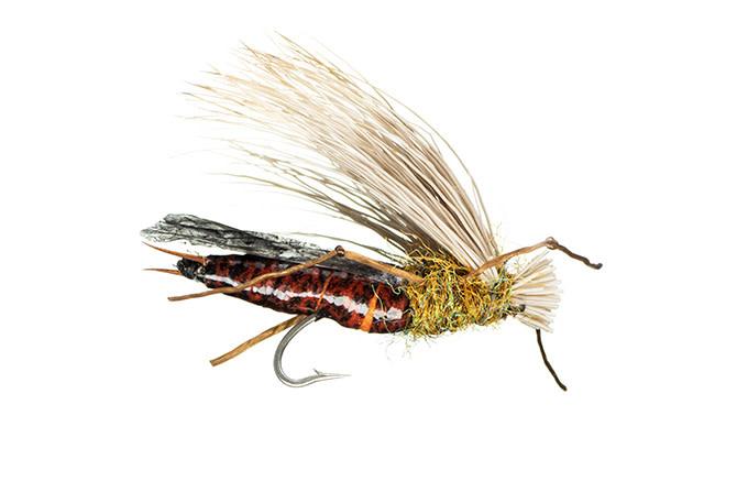 MFC Trina's Dog Puke - Salmonfly S4  [Single]