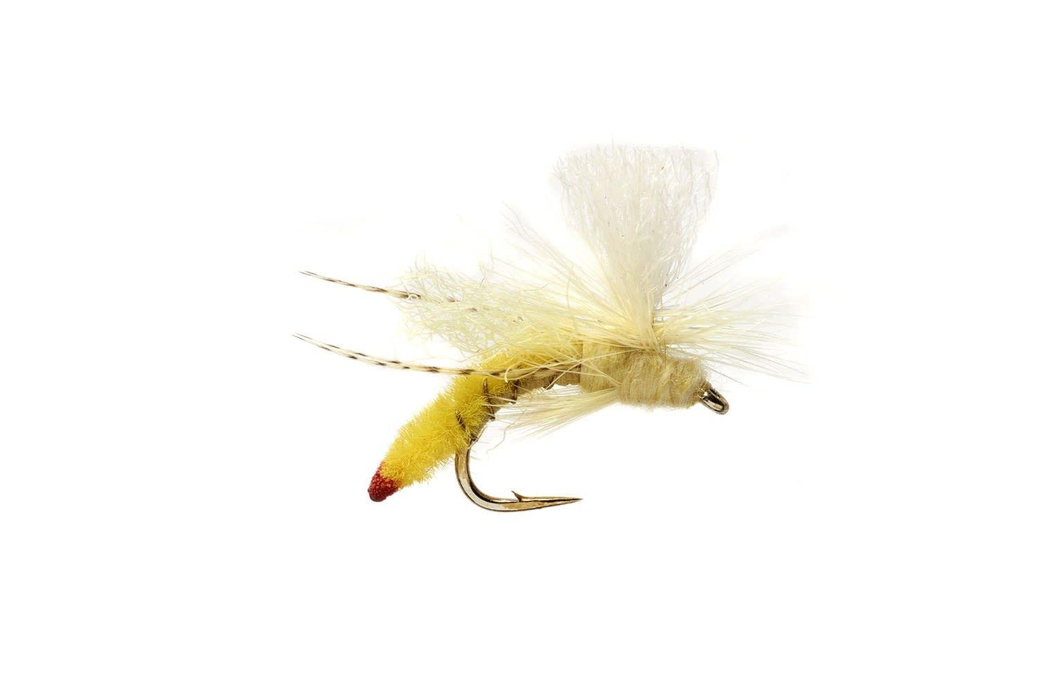 ORVIS Spotlight Yellow Sally Stone S14