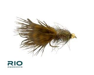 RIO RIO'S Jelly Leech Brown Olive S8   [Single]