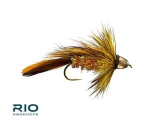 RIO RIO CH Orange Blossom Special S4  [Single]