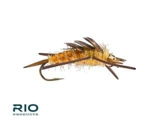 RIO RIO Rubber Legs Stonefly Bead [Dozen]