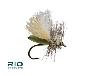RIO RIO'S  Foam Run Caddis Olive S16  [Single]