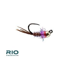 RIO RIO'S French Dip Purple S16 G2.8   [Single]
