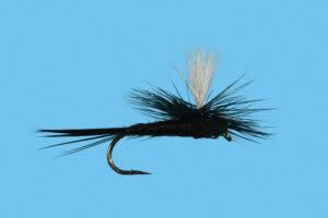 SOLITUDE FLY COMPANY SOLITUDE Parachute Black Gnat S14  [Single]
