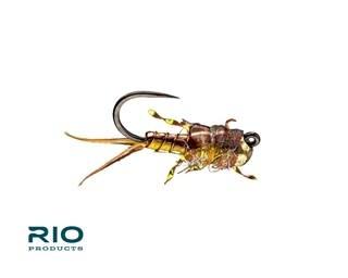 RIO RIO's My Gal Sal Yellow/Brown S14 [Single]