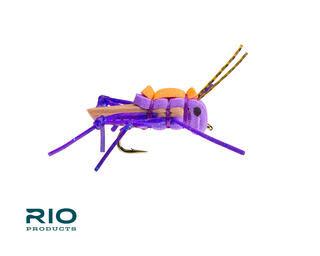 RIO RIO'S Juicy Hopper Purple S6  [Single]