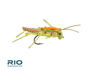 RIO RIO'S Juicy Hopper Olive S8 [Single]