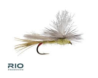 RIO RIO Parachute Yellow Sally S12  [Single]
