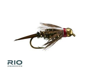 RIO RIO Red Head Prince TB  S12   [Single]