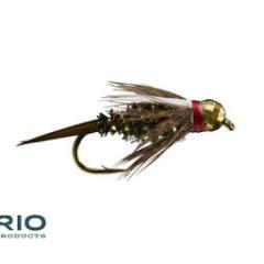 RIO RIO Red Head Prince TB S14  [Single]