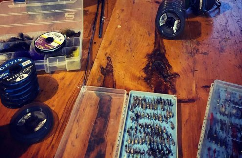 Largest Selection of Flies