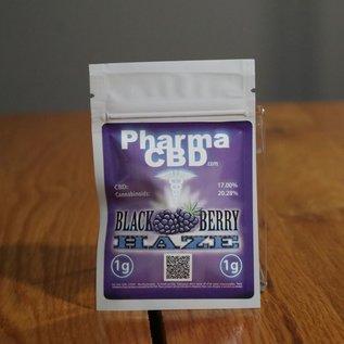 PharmaCBD Flower Blackberry Haze 1g