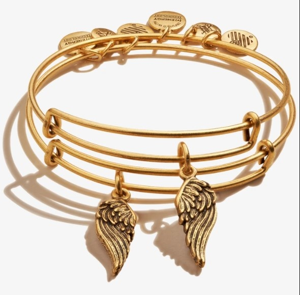 Wings S/2 Bangle Gold
