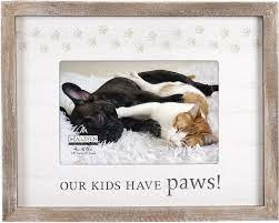Frame, Our Kids Have Paws